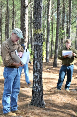 Dr. Tom Fox discusses lobololly pine management with forest industry representatives. Photo courtesy of John Seiler.